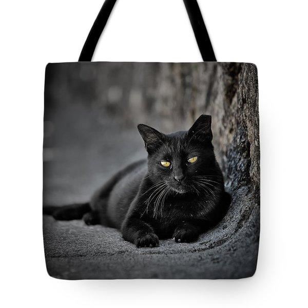 Stray Cat Tote Bag by Edgar Laureano