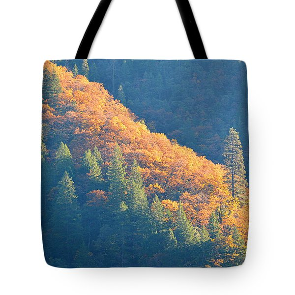 Tote Bag featuring the photograph Streak Of Gold by AJ Schibig