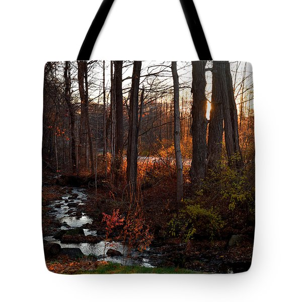 Stream In Autumn Tote Bag
