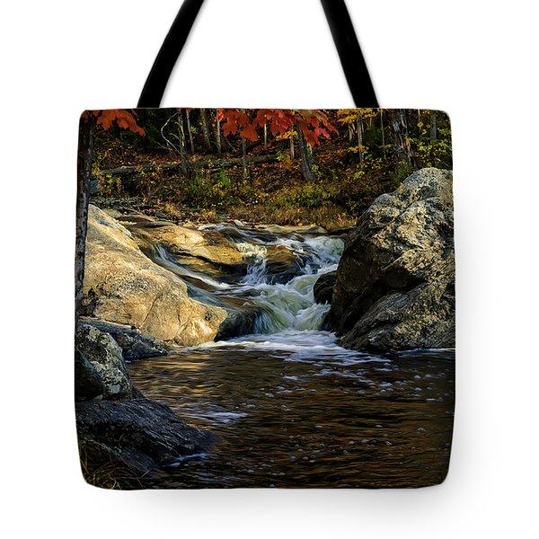 Stream In Autumn No.17 Tote Bag