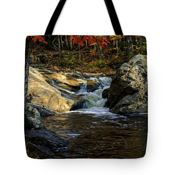 Tote Bag featuring the photograph Stream In Autumn No.17 by Mark Myhaver