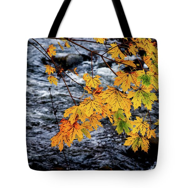 Stream In Fall Tote Bag