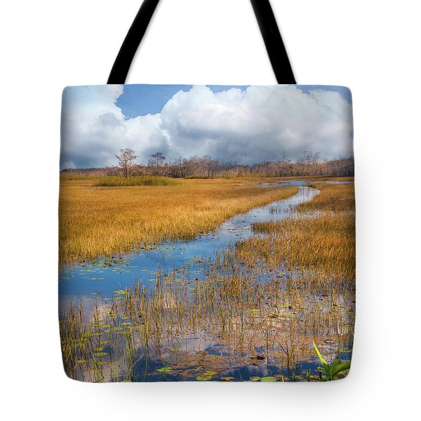 Tote Bag featuring the photograph Stream Through The Everglades by Debra and Dave Vanderlaan
