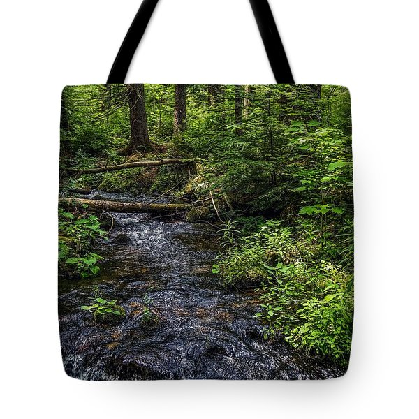 Tote Bag featuring the photograph Streaming by Kendall McKernon