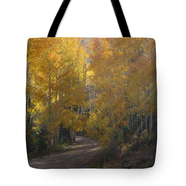 Tote Bag featuring the photograph Streaming Light Paiute Trail Fremont Utah by Deborah Moen