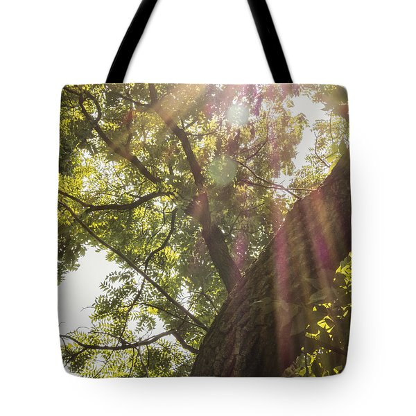 Streaming Sunlight Tote Bag