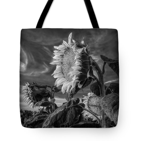 Strength Of A Sunflower Tote Bag