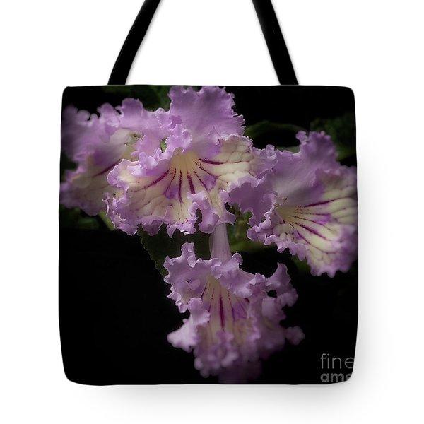 Streptocarpus 'renia' Tote Bag