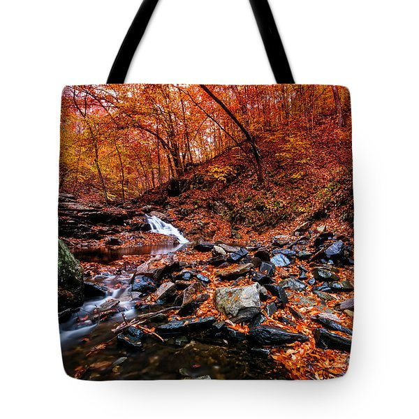 Tote Bag featuring the photograph Stress Relief by Edward Kreis
