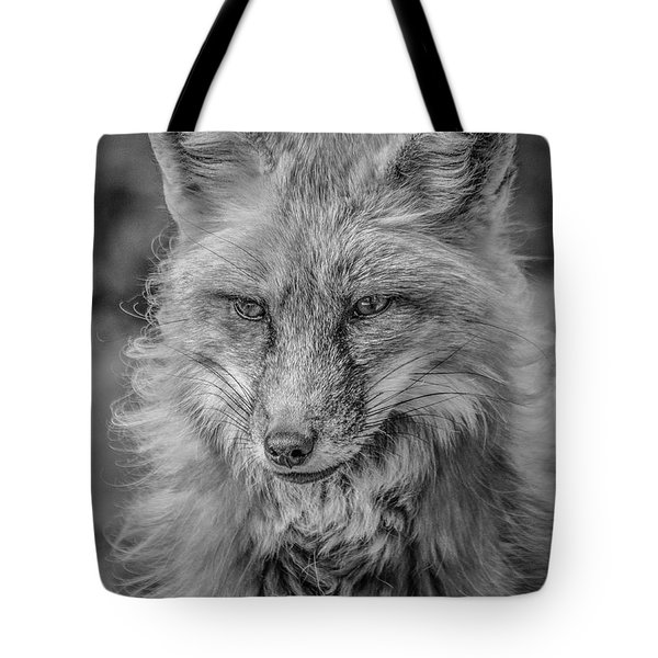 Tote Bag featuring the photograph Striking A Pose Black And White by Teresa Wilson