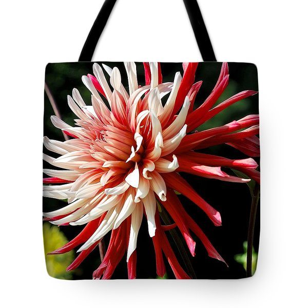 Striking Dahlia Red And White Tote Bag