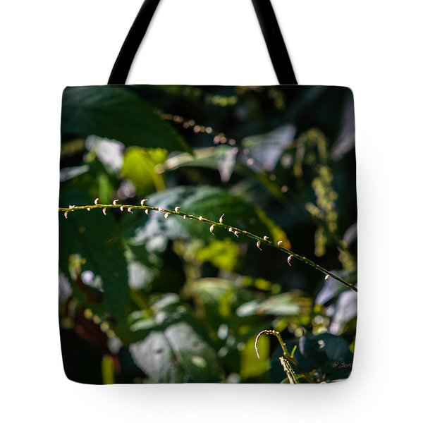 Tote Bag featuring the photograph String Of Light by Edward Peterson