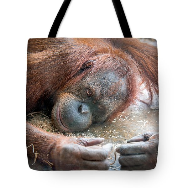 String Theory II Tote Bag
