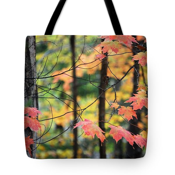 Stringing Up The Colors Tote Bag