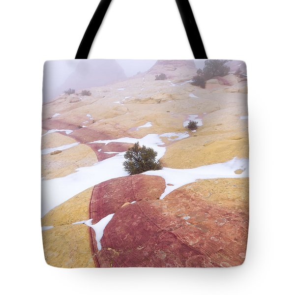 Tote Bag featuring the photograph Stripe by Chad Dutson