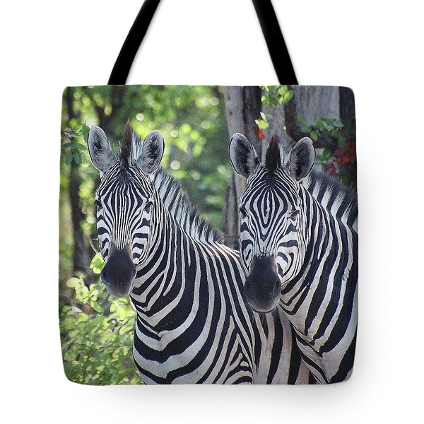 Stripes And Ovals Tote Bag