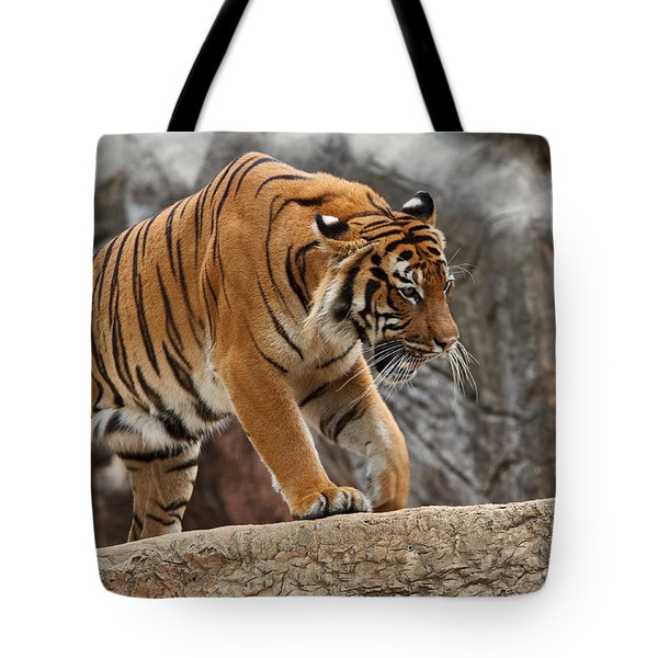 Stripes Tote Bag by Jonas Wingfield