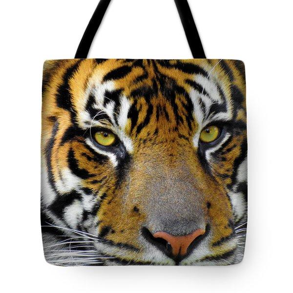 Stripes, No. 26 Tote Bag