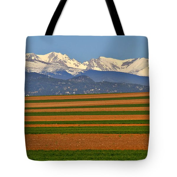 Stripped Fields And Balloon Tote Bag by Scott Mahon