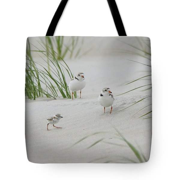 Struggle In The Blowing Sand Tote Bag