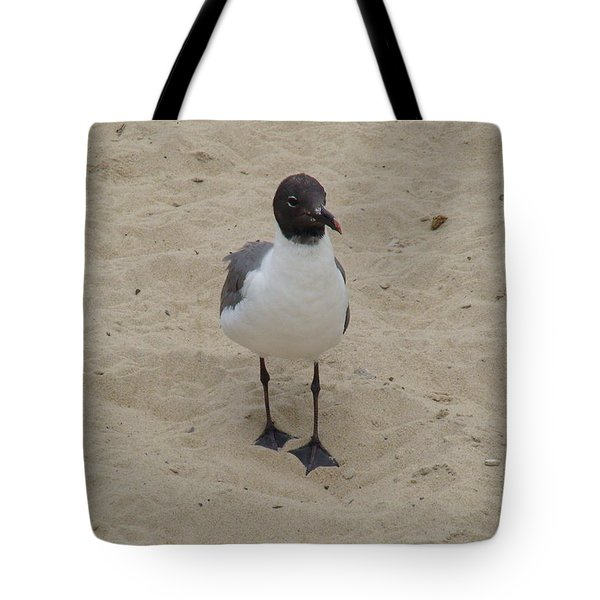 Struttin' Seagull  Tote Bag by Charles Kraus