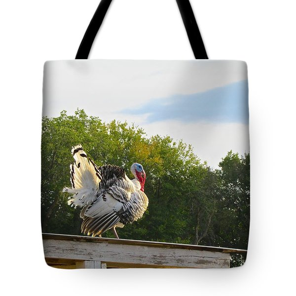 Tote Bag featuring the photograph Strutting His Stuff by Brenda Pressnall