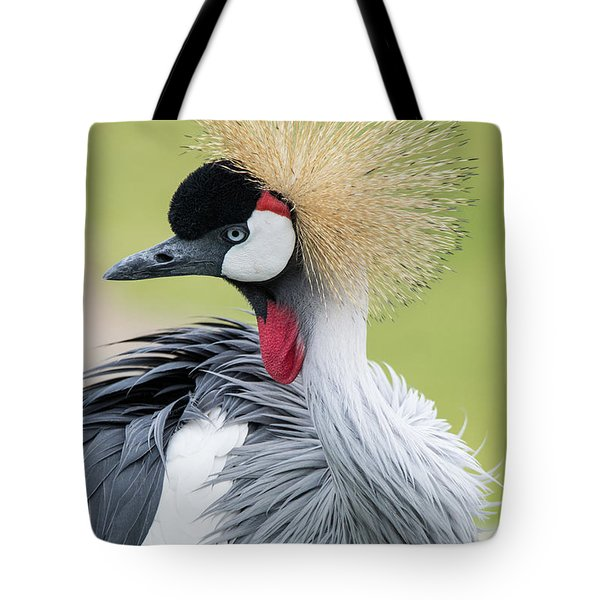 Strutting My Stuff Tote Bag