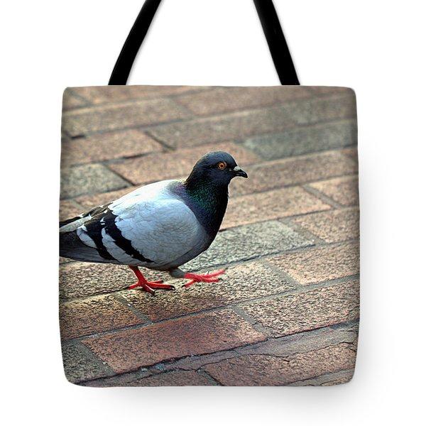 Strutting Pigeon Tote Bag