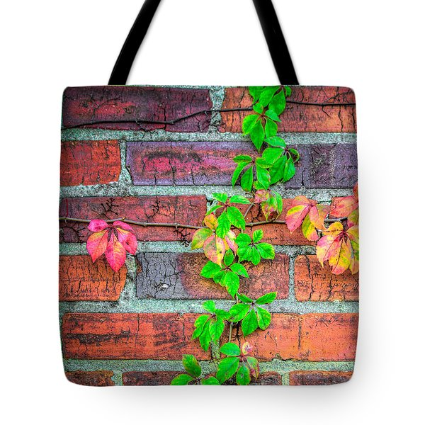 Stuck On You Tote Bag by Marion Johnson