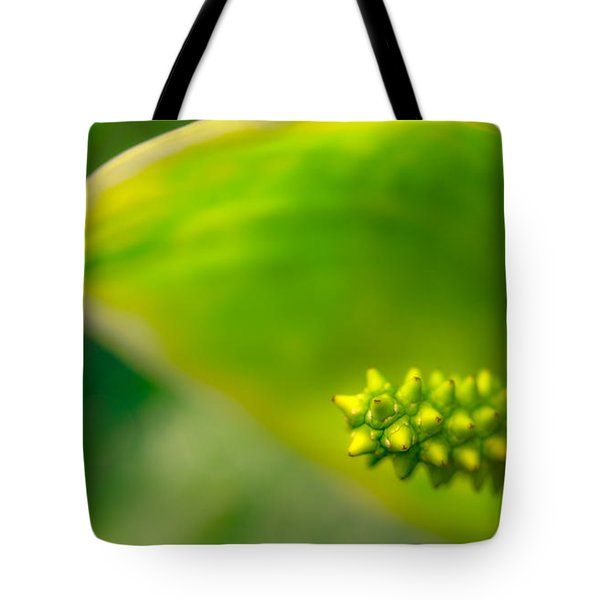 Studs And Curl Tote Bag