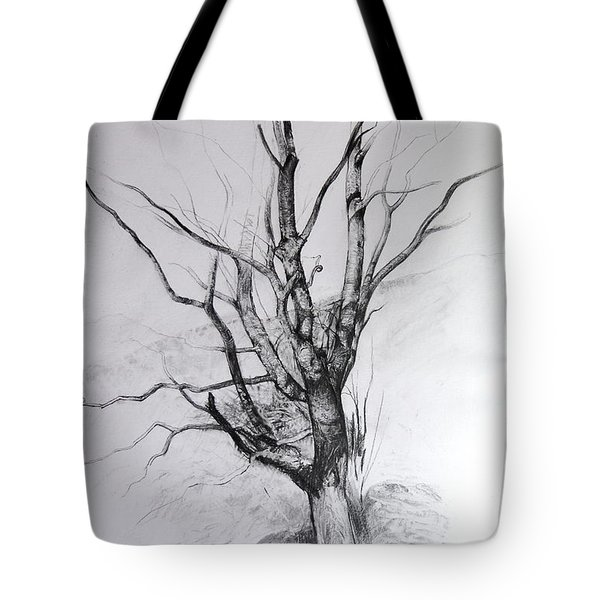 Study Of A Tree Tote Bag