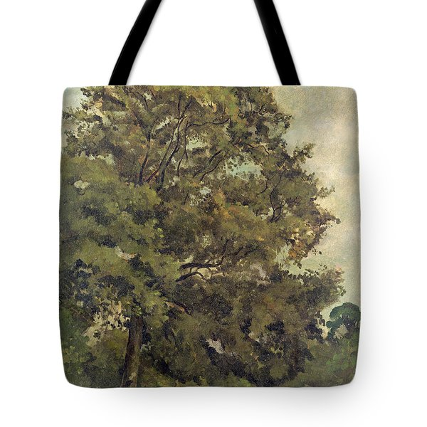 Study Of An Ash Tree Tote Bag by Lionel Constable