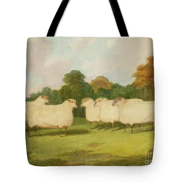 Study Of Sheep In A Landscape   Tote Bag