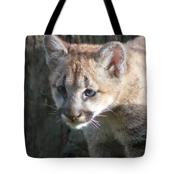 Tote Bag featuring the photograph Studying The Ways by Laddie Halupa