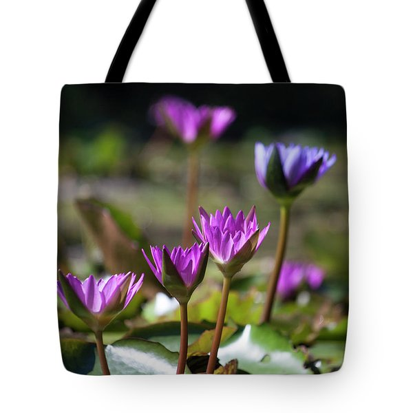 Tote Bag featuring the photograph Stuff Of Dreams by Suzanne Gaff