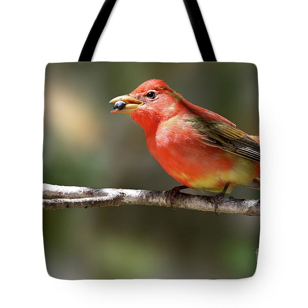 Stuffed Summer Tanager Tote Bag