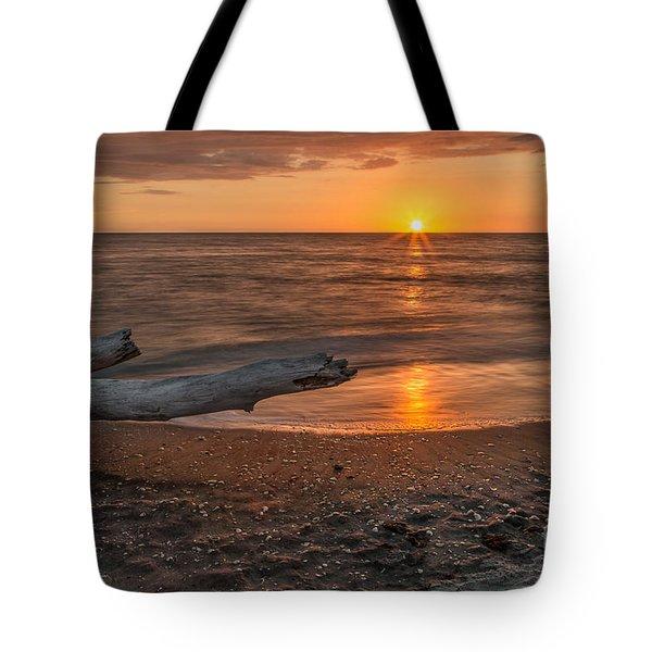 Stump Sunset Tote Bag