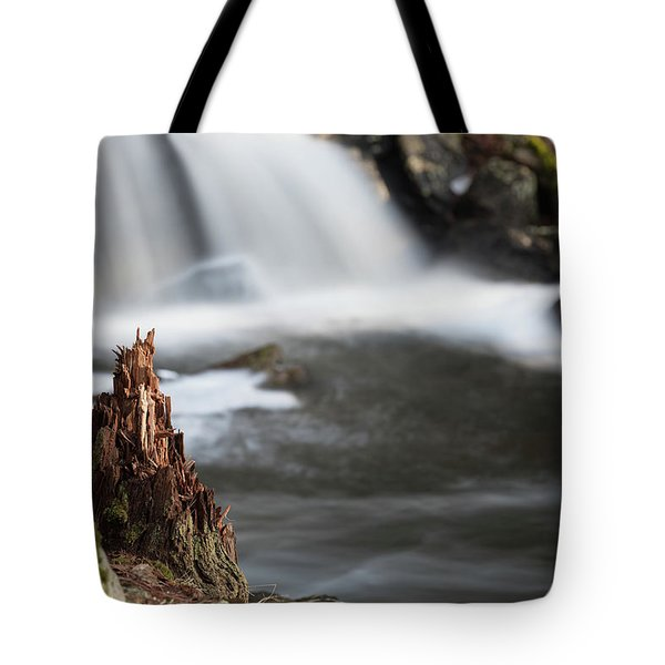 Stumped At The Secret Waterfall Tote Bag