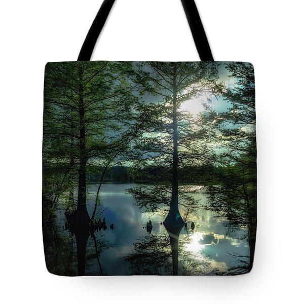 Stumpy Lake Tote Bag