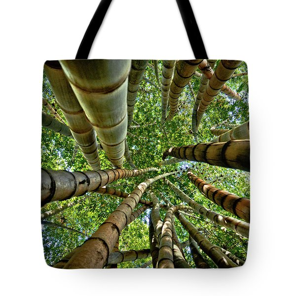 Stunning Bamboo Forest - Color Tote Bag