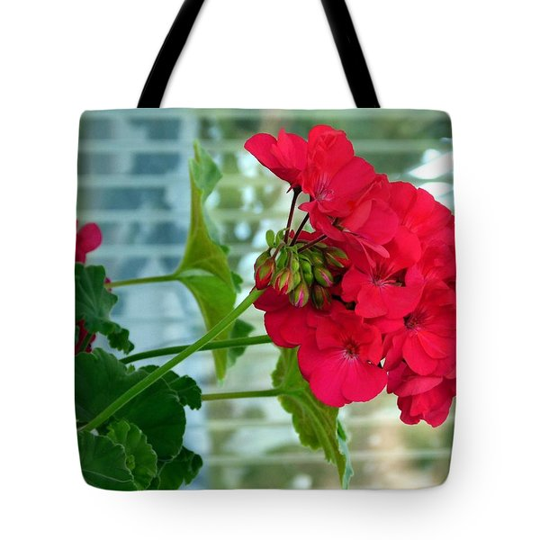 Stunning Red Geranium Tote Bag