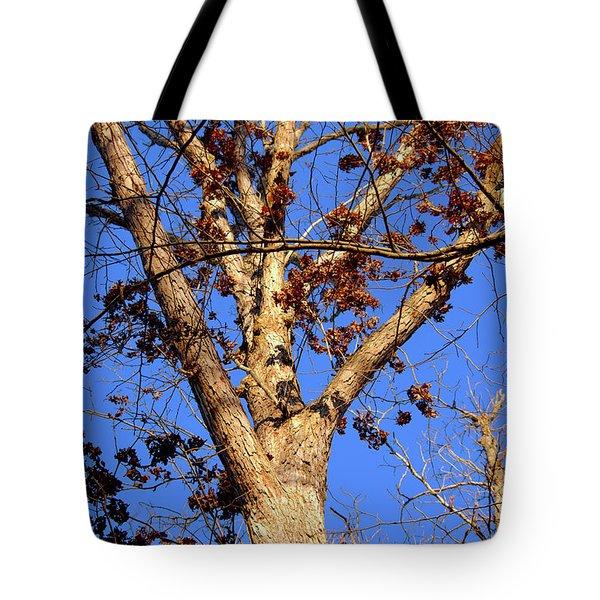 Stunning Tree Tote Bag