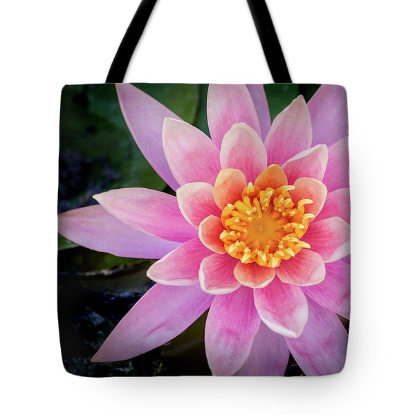 Stunning Water Lily Tote Bag