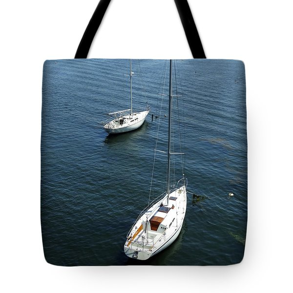 Tote Bag featuring the photograph Sturgeon Bay Canal by David T Wilkinson