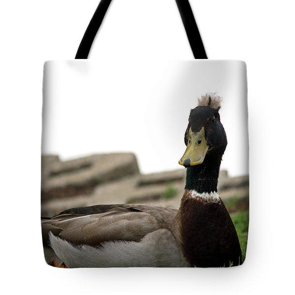 Stylin' Tote Bag