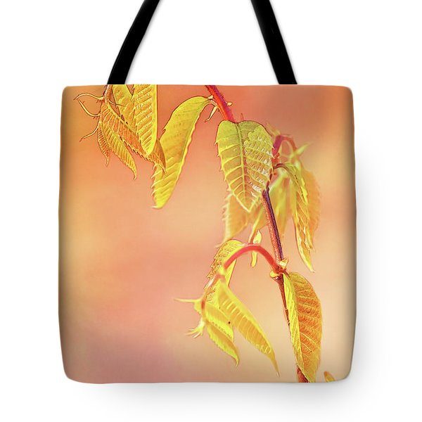 Stylized Baby Chestnut Leaves Tote Bag
