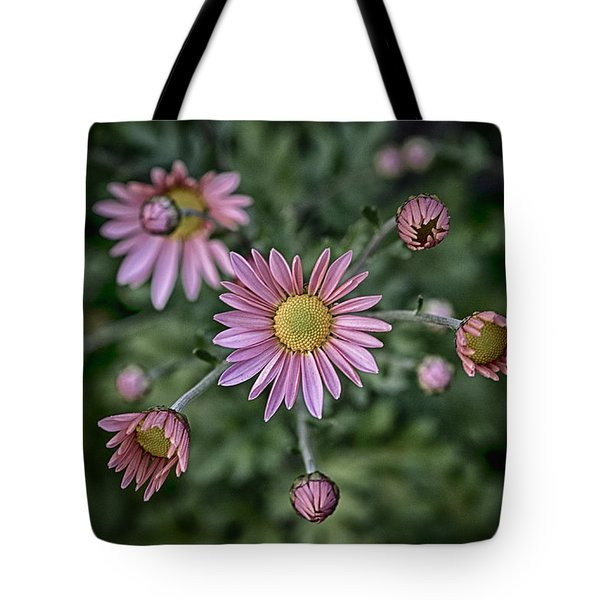 Stylized Daisies 2 Tote Bag