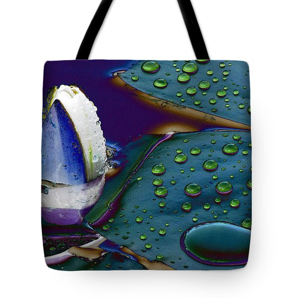 Subdued Light And Daydreams Tote Bag