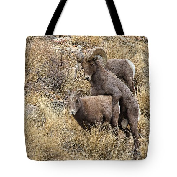 Committed To The Cause Tote Bag