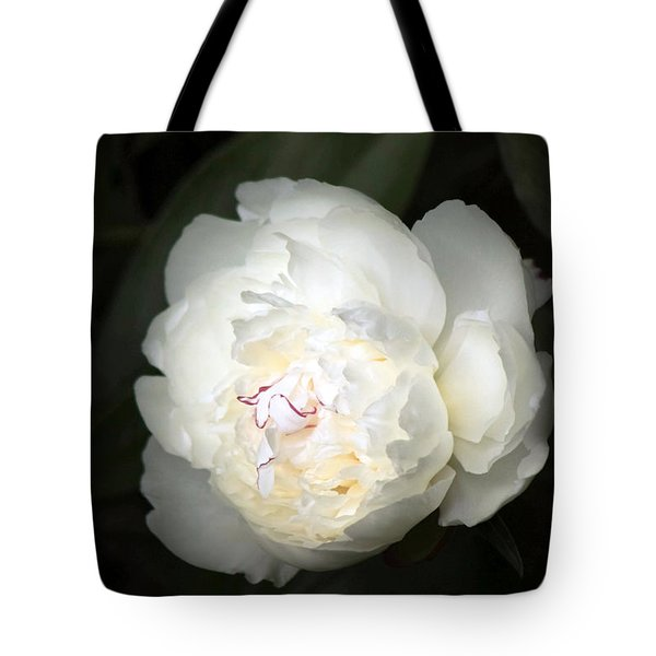 Tote Bag featuring the photograph Subtle Romance by Deborah  Crew-Johnson